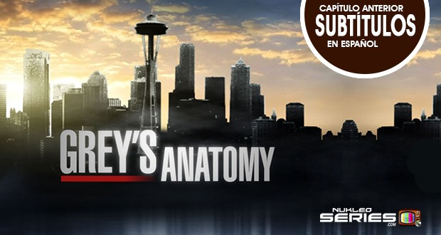 Greys-Anatomy-Anterior