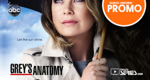 Greys-Anatomy-T12-Promo